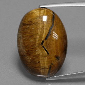 Gold Brown Tiger's Eye Gem - 25ct Oval Cabochon (ID: 384696)