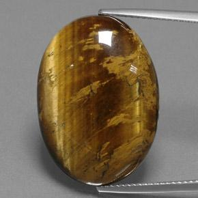 Gold Brown Tiger's Eye Gem - 25ct Oval Cabochon (ID: 384699)