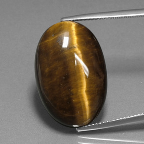 Gold Brown Tiger's Eye Gem - 20.1ct Oval Cabochon (ID: 389810)