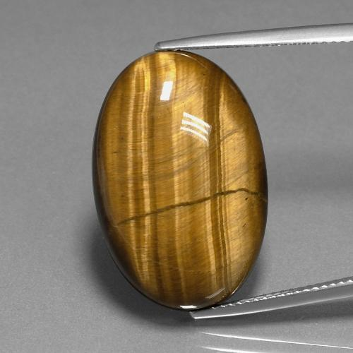 Gold Brown Tiger's Eye Gem - 20.2ct Oval Cabochon (ID: 389811)
