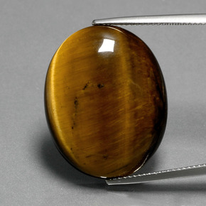 22.50 ct Oval Cabochon Gold Brown Tiger's Eye Gemstone 25.31 mm x 20.3 mm (Product ID: 389998)