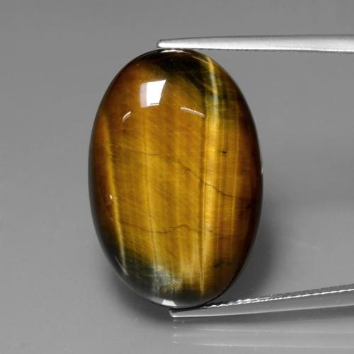 Gold Brown Tiger's Eye Gem - 20.6ct Oval Cabochon (ID: 390086)