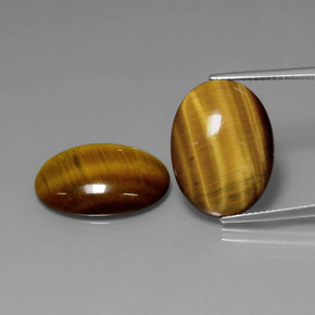 Gold Brown Tiger's Eye Gem - 10.4ct Oval Cabochon (ID: 390089)