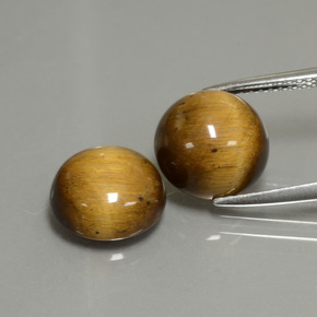 Gold Brown Tiger's Eye Gem - 3.6ct Round Cabochon (ID: 390324)