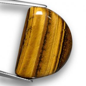 Gold Brown Tiger's Eye Gem - 29.5ct Half Moon Cabochon (ID: 461917)