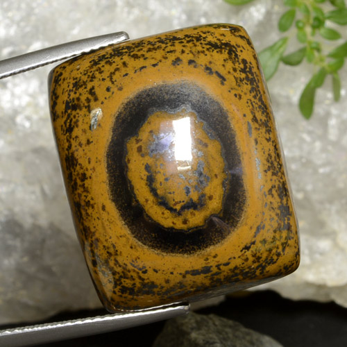 Gold Brown Tiger's Eye Gem - 51ct Cushion Cabochon (ID: 471073)