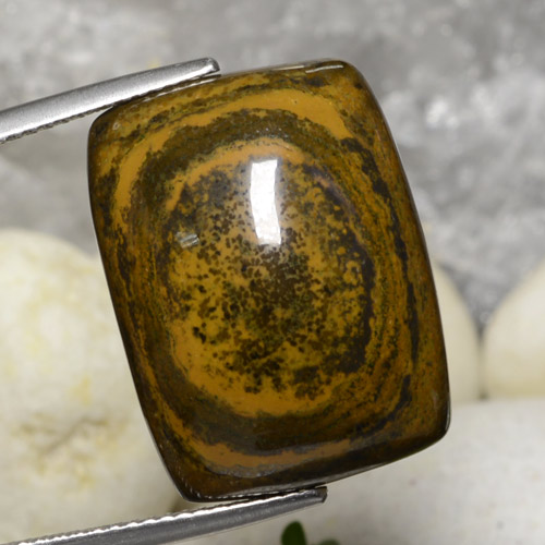 Gold Brown Tiger's Eye Gem - 25.7ct Cushion Cabochon (ID: 472539)