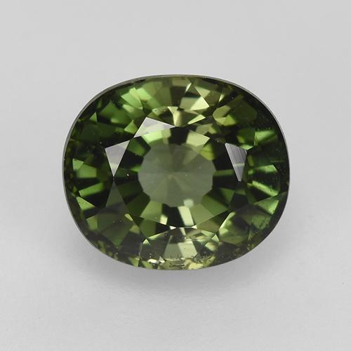 1.5ct Oval Facet Forest Green Tourmaline Gem (ID: 230296)