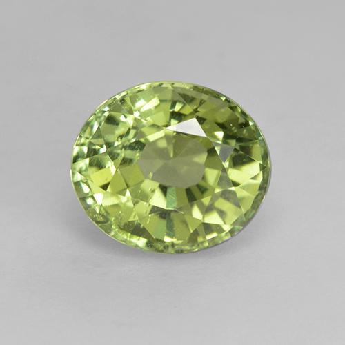 Pear Green  Tourmaline Gem - 1.3ct Oval Facet (ID: 232014)