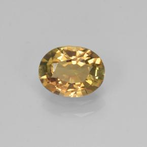 0.7ct Oval Facet Greenish Golden Tourmaline Gem (ID: 239366)