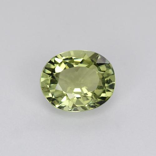 Medium Green  Turmalina Gema - 0.8ct Forma ovalada (ID: 242340)