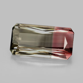 Buy 12.56 ct Bi-color Tourmaline 19.40 mm x 9.9 mm from GemSelect (Product ID: 244704)