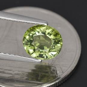 Buy 1.23 ct Green Tourmaline 6.85 mm x 5.9 mm from GemSelect (Product ID: 255846)