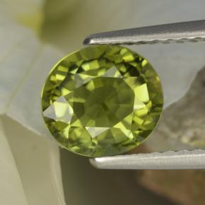 1.5ct Oval Facet Olive Green Tourmaline Gem (ID: 260064)