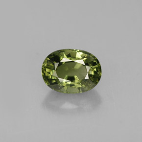 Buy 1.04 ct Green Tourmaline 7.09 mm x 5.3 mm from GemSelect (Product ID: 261220)