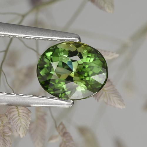 1.2ct Oval Facet Earthy Green      Tourmaline Gem (ID: 284834)