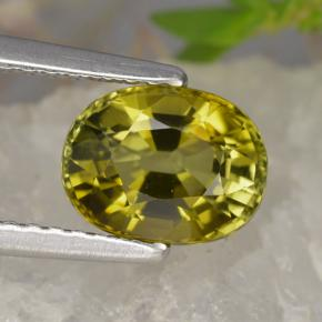 Buy 1.59ct Yellowish Green Tourmaline 7.77mm x 5.96mm from GemSelect (Product ID: 312482)