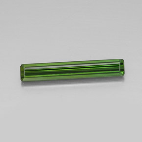2.7ct Octagon Facet Forest Green Tourmaline Gem (ID: 348384)