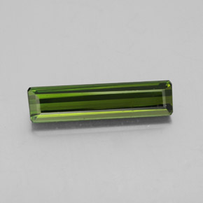 2.5ct Octagon Facet Medium Green Tourmaline Gem (ID: 348525)