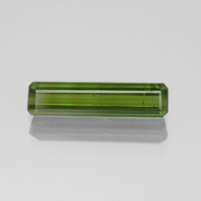 1.5ct Octagon Facet Forest Green Tourmaline Gem (ID: 349598)