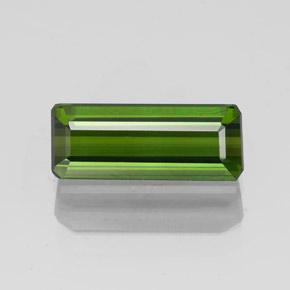 1.5ct Octagon Facet Forest Green Tourmaline Gem (ID: 349603)