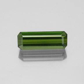 1.6ct Octagon Facet Forest Green Tourmaline Gem (ID: 350267)