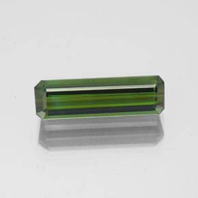 1.6ct Octagon Facet Forest Green Tourmaline Gem (ID: 350301)
