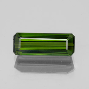 1.6ct Octagon Facet Forest Green Tourmaline Gem (ID: 350308)
