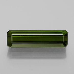 1.6ct Octagon Facet Forest Green Tourmaline Gem (ID: 364144)