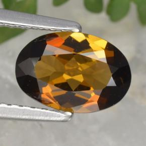 Warm Brown Turmalina Gema - 1.2ct Forma ovalada (ID: 390028)
