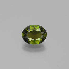 1.2ct Oval Facet Seaweed Green Tourmaline Gem (ID: 390157)