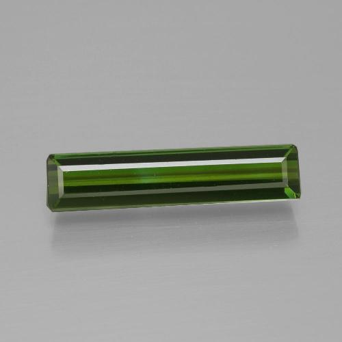 Forest Green Tourmaline Gem - 1.5ct Octagon Facet (ID: 390946)