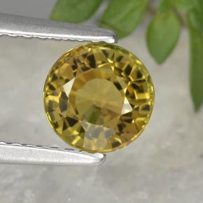 Medium Yellow Turmalina Gema - 1.3ct Faceta Redonda (ID: 401056)