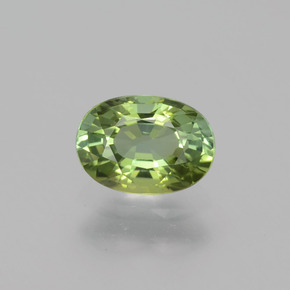 0.7ct Oval Facet Forest Green Tourmaline Gem (ID: 401125)