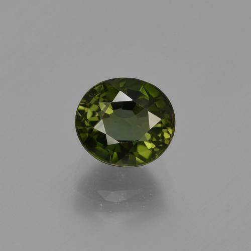 1.2ct Oval Facet Forest Green Tourmaline Gem (ID: 412948)