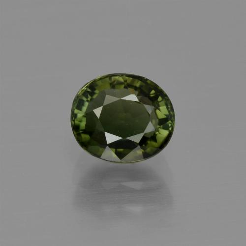 1.1ct Oval Facet Forest Green Tourmaline Gem (ID: 413154)