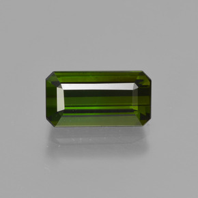 1.9ct Octagon Facet Green Tourmaline Gem (ID: 414061)
