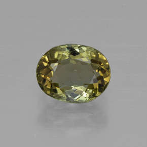 Warm Forest Green Tourmaline gemme - 1.1ct Ovale facette (ID: 415260)