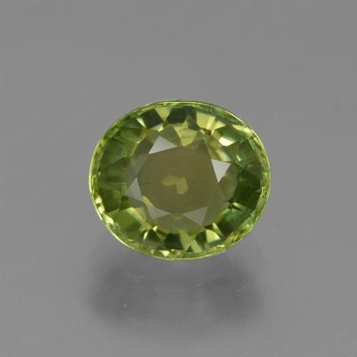 1.2ct Oval Facet Forest Green Tourmaline Gem (ID: 419852)