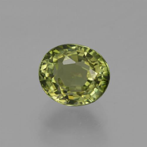 1.1ct Oval Facet Forest Green Tourmaline Gem (ID: 419859)
