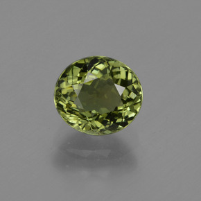 1.3ct Oval Facet Forest Green Tourmaline Gem (ID: 420444)