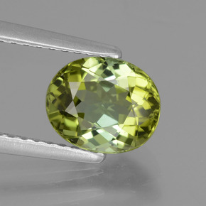 1.48 ct Oval Facet Yellowish Green Tourmaline Gemstone 7.69 mm x 6.5 mm (Product ID: 441167)