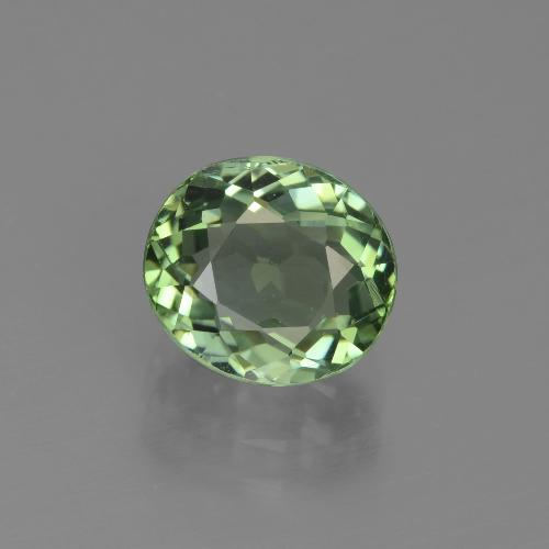 2.4ct Oval Facet Forest Green Tourmaline Gem (ID: 441227)
