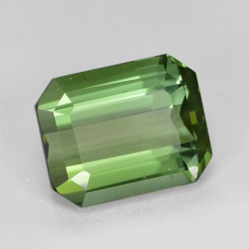 Green Tourmaline Gem - 3.3ct Octagon Step Cut (ID: 446415)