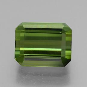 Earthy Green Tourmaline gemme - 2.4ct Octogone taillé en degrés (ID: 463553)