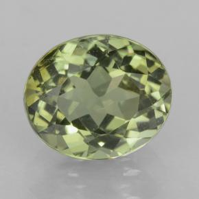 1.1ct Oval Facet Forest Green Tourmaline Gem (ID: 501542)