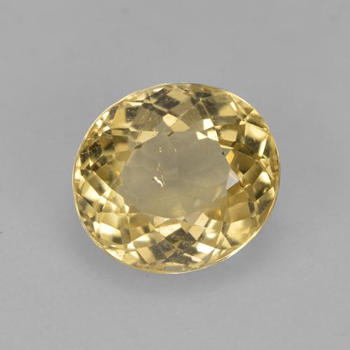 1.6ct Oval Facet Rich Yellow Tourmaline Gem (ID: 525284)