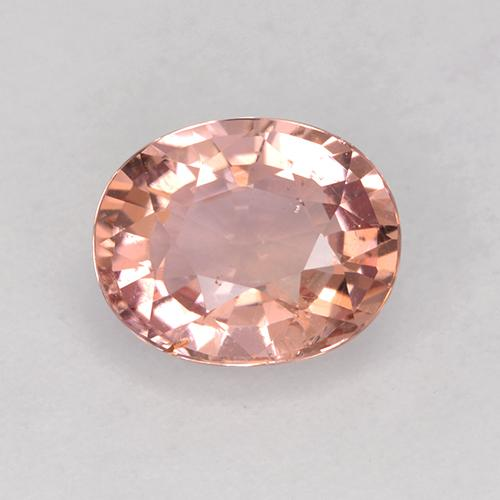 1.6ct Oval Facet Indian Red Tourmaline Gem (ID: 525359)
