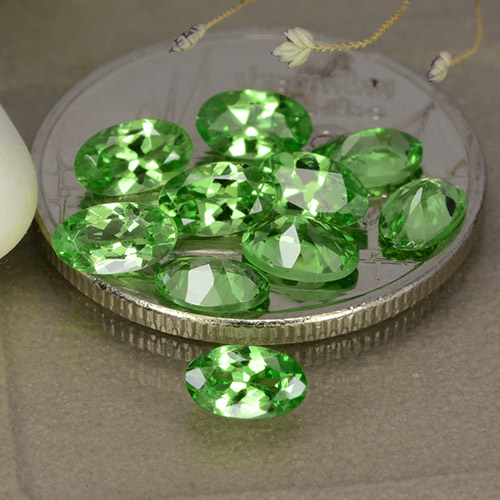 0.3ct Oval Facet Medium Green Tsavorite Garnet Gem (ID: 481869)