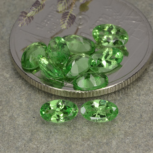 0.3ct Oval Facet Green Tsavorite Garnet Gem (ID: 482347)